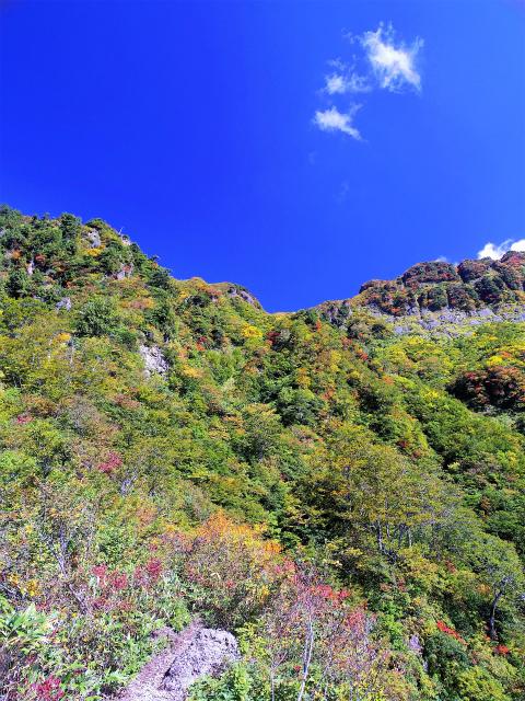 八海山(屏風道~新開道)ノゾキの松七合目からの薬師岳【登山口コースガイド】