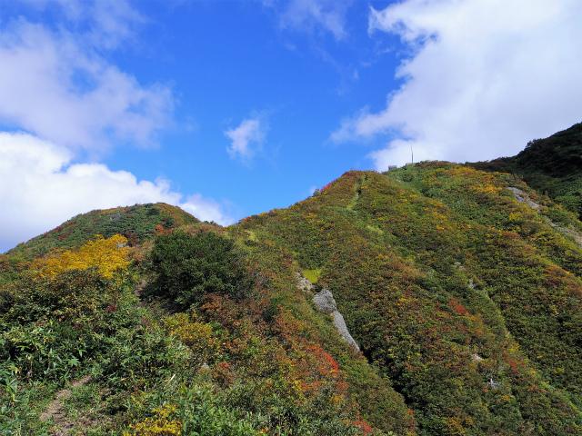 八海山(屏風道~新開道)八合目【登山口コースガイド】