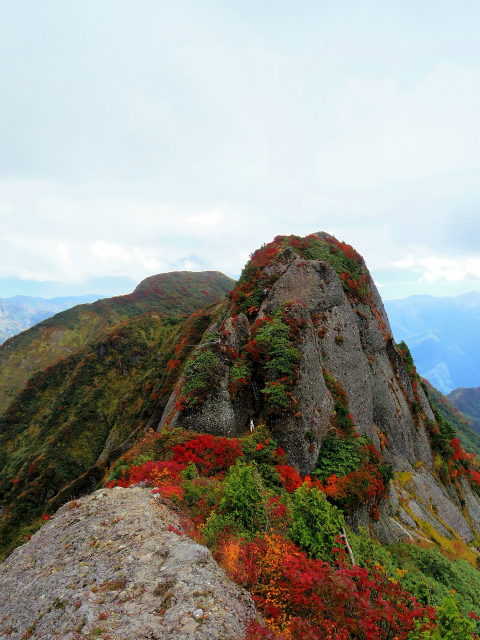 八海山(屏風道~新開道)釈迦岳山頂からの摩利支岳【登山口コースガイド】