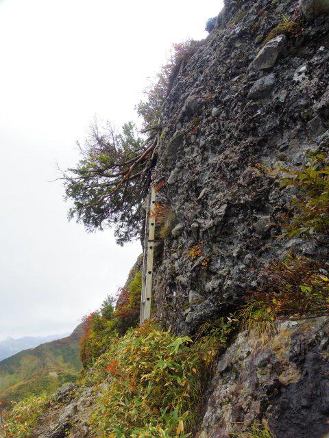 八海山(屏風道~新開道)大日岳直下の梯子と鎖場【登山口コースガイド】