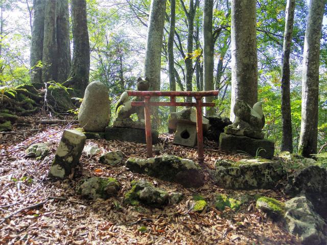 八海山(屏風道~新開道)稲荷清水【登山口コースガイド】