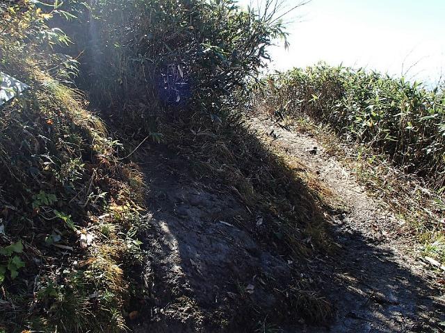八海山(屏風道~新開道)迂回路と八ツ峰縦走路分岐【登山口コースガイド】
