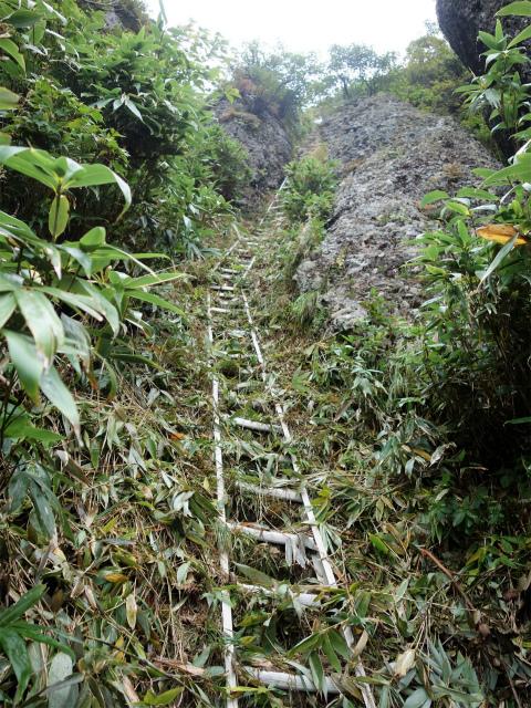 八海山(屏風道~新開道)大日岳直下の長い梯子【登山口コースガイド】