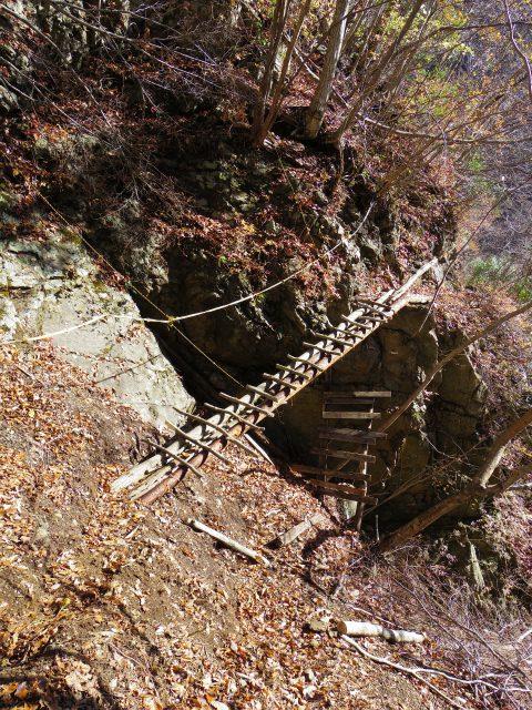 蛭ヶ岳(白馬尾根~鬼ヶ岩)コースガイド 高巻き丸太橋【登山口ナビ】