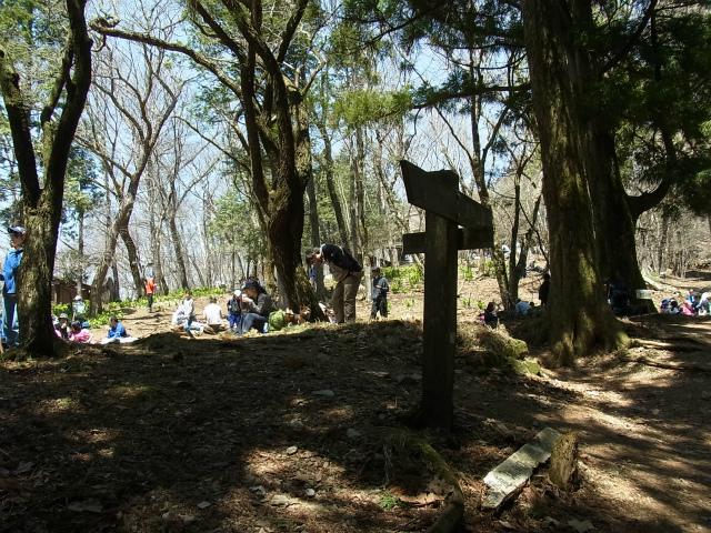 武甲山(表参道コース) 登山口コースガイド 山頂分岐【登山口ナビ】