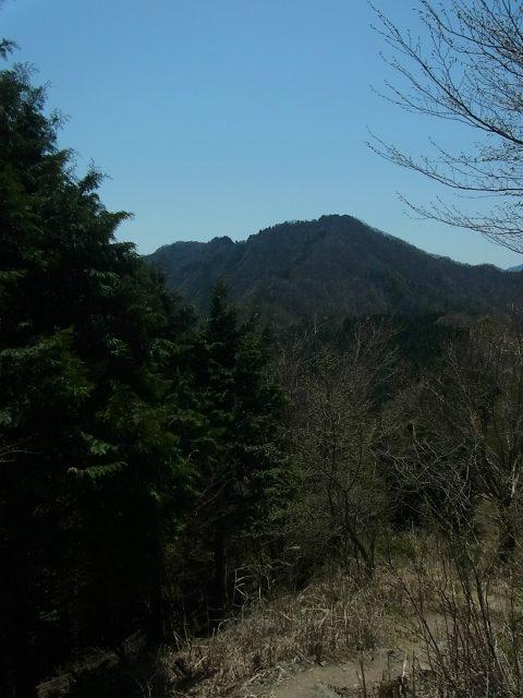 武甲山(表参道コース) 登山口コースガイド 小持山【登山口ナビ】