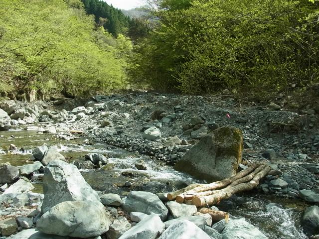 蛭ヶ岳(白馬尾根~鬼ヶ岩)コースガイド 雷平の丸太橋【登山口ナビ】