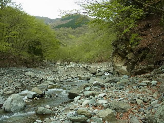 蛭ヶ岳(雷滝~市原新道)コースガイド 雷平【登山口ナビ】