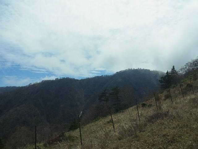 蛭ヶ岳(白馬尾根~鬼ヶ岩)コースガイド 丹沢山【登山口ナビ】