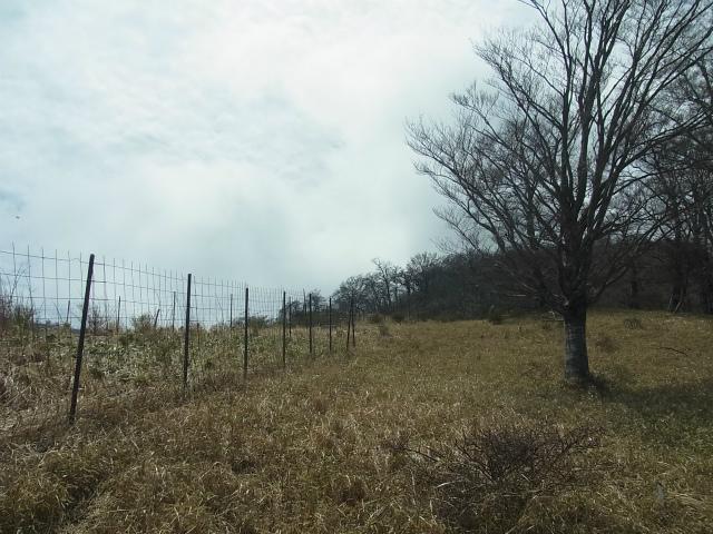 蛭ヶ岳(白馬尾根~鬼ヶ岩)コースガイド 植生保護柵【登山口ナビ】