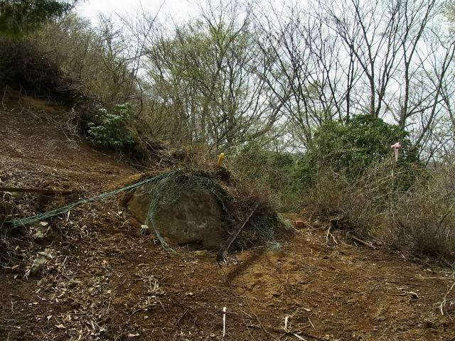 蛭ヶ岳(白馬尾根~鬼ヶ岩)コースガイド 鹿柵終点【登山口ナビ】