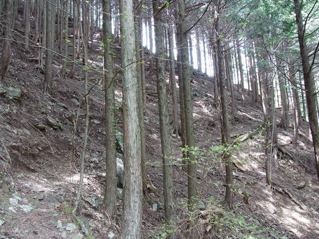 蛭ヶ岳(白馬尾根~鬼ヶ岩)コースガイド【登山口ナビ】