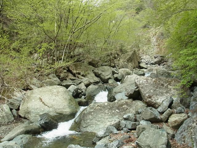 雷滝コースガイド 原小屋沢渡渉【登山口ナビ】