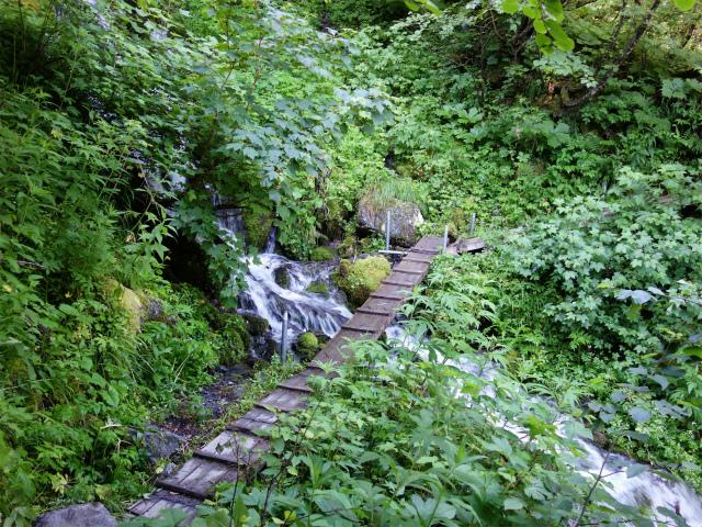 北岳(左俣コース)登山口コースガイド 支沢の木橋【登山口ナビ】