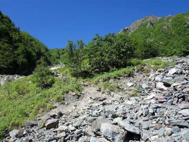 北岳(左俣コース)登山口コースガイド 急登【登山口ナビ】