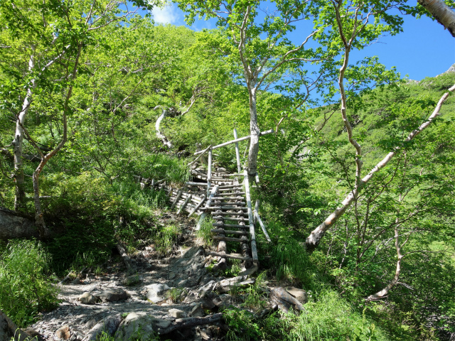 北岳(左俣コース)登山口コースガイド 階段【登山口ナビ】