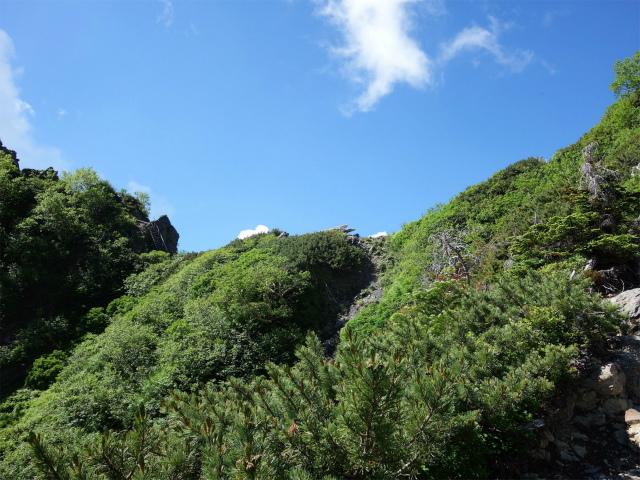 北岳(左俣コース)登山口コースガイド 八本歯のコル【登山口ナビ】