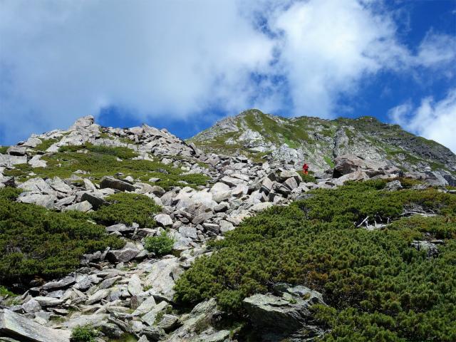 北岳(左俣コース)登山口コースガイド 稜線【登山口ナビ】