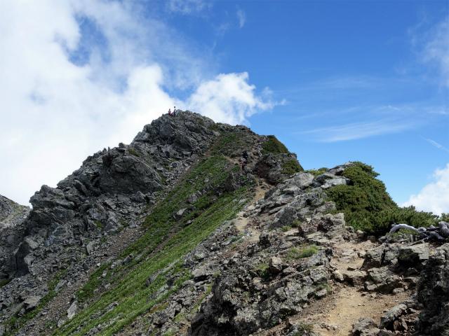 北岳(左俣コース)登山口コースガイド 山頂直下【登山口ナビ】