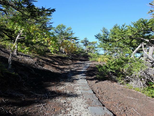 富士山 御中道(大沢崩れ) 登山口コースガイド 御庭遊歩道【登山口ナビ】
