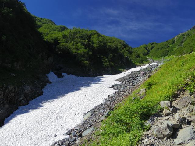 北岳(左俣コース)登山口コースガイド 大樺沢雪渓【登山口ナビ】