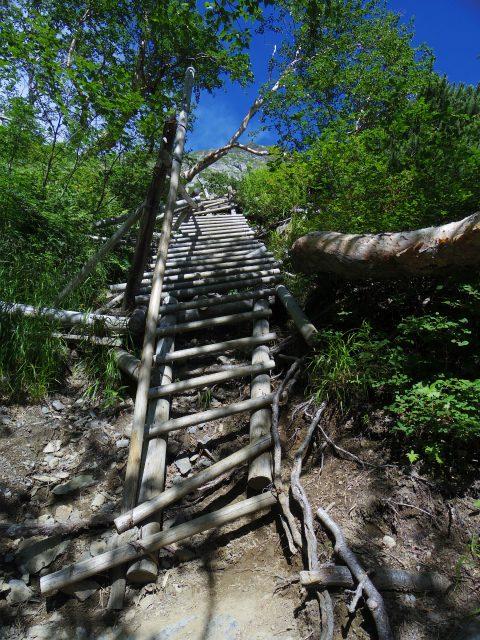 北岳(左俣コース)登山口コースガイド 尾根取りつきの階段【登山口ナビ】