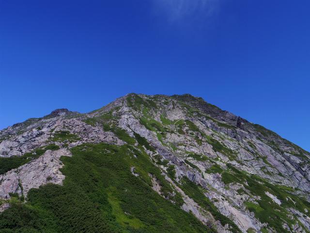 北岳(左俣コース)登山口コースガイド 八本歯のコル上からの北岳【登山口ナビ】