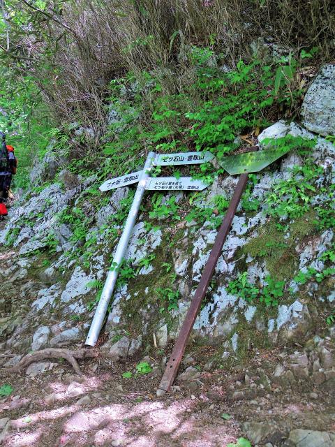 雲取山(七ツ石山・鴨沢ルート)登山口コースガイド ブナ坂への巻き道と七ツ石小屋の分岐【登山口ナビ】