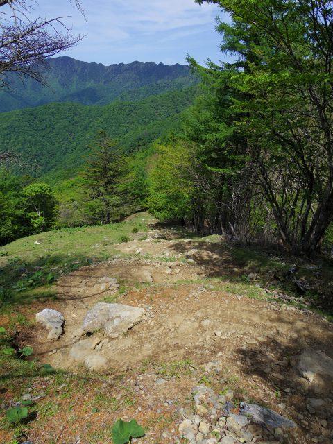 雲取山(七ツ石山・鴨沢ルート)登山口コースガイド 七ツ石山の下り坂【登山口ナビ】