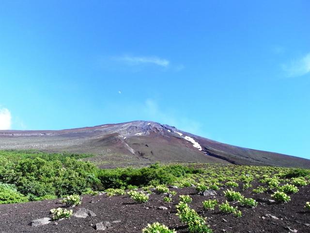 富士山 御中道(大沢崩れ) 登山口コースガイド 探勝路からの富士山【登山口ナビ】