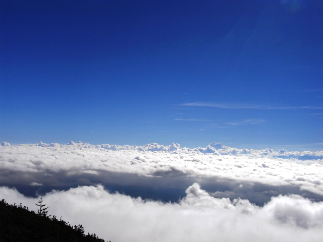 富士山 御中道(大沢崩れ) 登山口コースガイド 探勝路からの雲海【登山口ナビ】