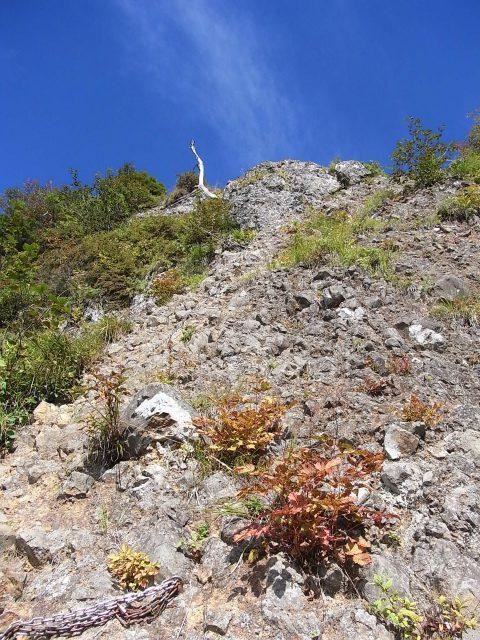 戸隠山(西岳・本院岳~P1尾根) 登山口コースガイド 胸突岩の鎖場【登山口ナビ】