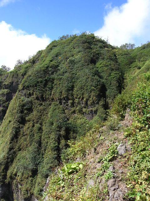 戸隠山(西岳・本院岳~P1尾根) 登山口コースガイド 西岳小ピークからの西岳断崖【登山口ナビ】