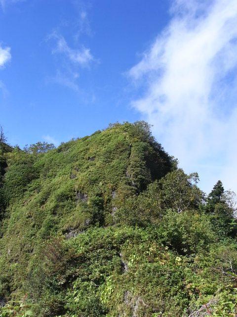 戸隠山(西岳・本院岳~P1尾根) 登山口コースガイド 西岳小ピークからの西岳鎖場【登山口ナビ】