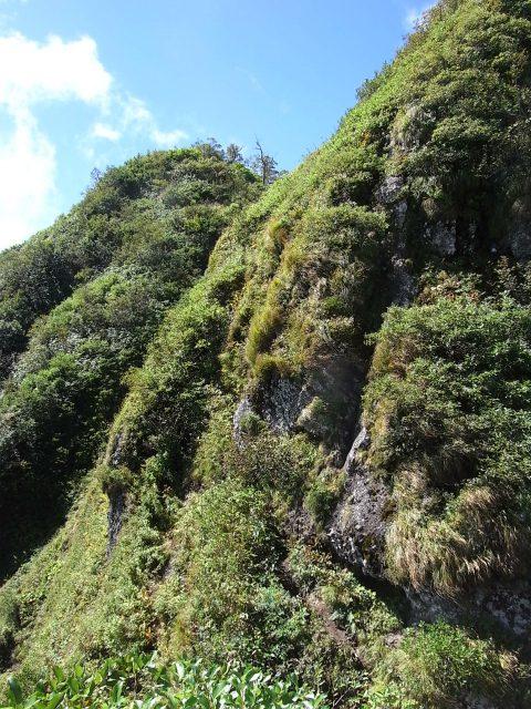 戸隠山(西岳・本院岳~P1尾根) 登山口コースガイド 西岳キレット【登山口ナビ】