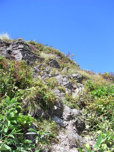 戸隠山(西岳・本院岳~P1尾根) 登山口コースガイド P1峰弁慶岳直下の急斜面【登山口ナビ】