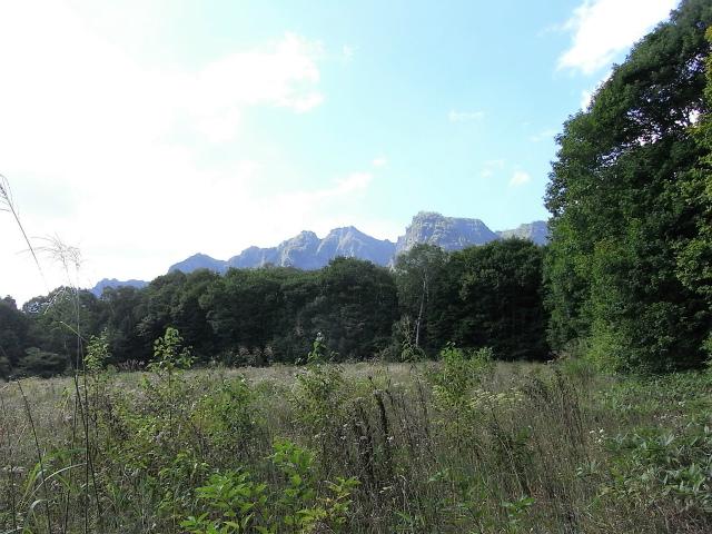 戸隠山(西岳・本院岳~P1尾根) 登山口コースガイド 天狗平からのP2・P3峰【登山口ナビ】