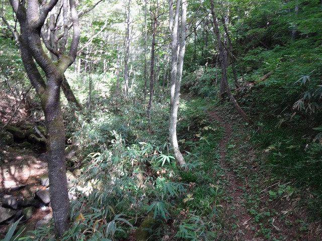 戸隠山(西岳・本院岳~P1尾根) 登山口コースガイド 鏡池の登り返し【登山口ナビ】