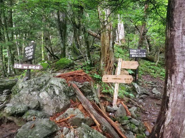 北岳(左俣コース)登山口コースガイド 白根御池分岐【登山口ナビ】