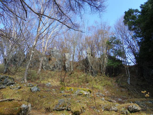 雲取山(七ツ石山・鴨沢ルート)登山口コースガイド 七ツ石山の岩【登山口ナビ】