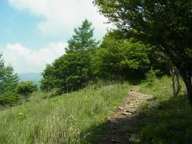 乾徳山(大平高原~道満尾根)登山口コースガイド 道満尾根【登山口ナビ】