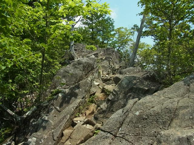 乾徳山(大平高原~道満尾根)登山口コースガイド 道満尾根の露岩【登山口ナビ】