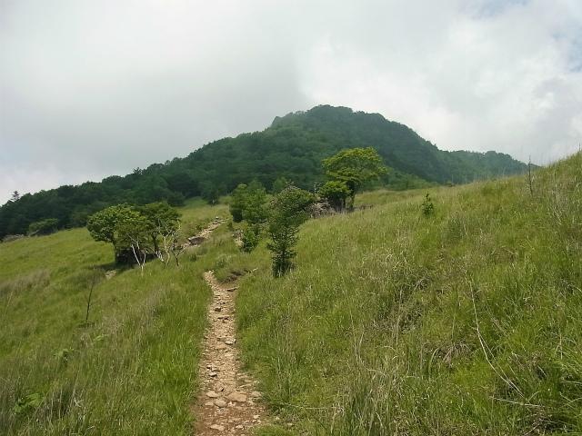乾徳山(徳和峠~道満尾根コース)登山口コースガイド 国師ヶ原高原【登山口ナビ】