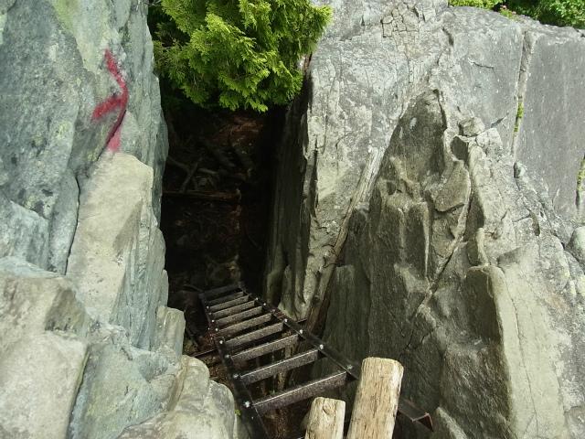 乾徳山(大平高原~道満尾根)登山口コースガイド 梯子【登山口ナビ】