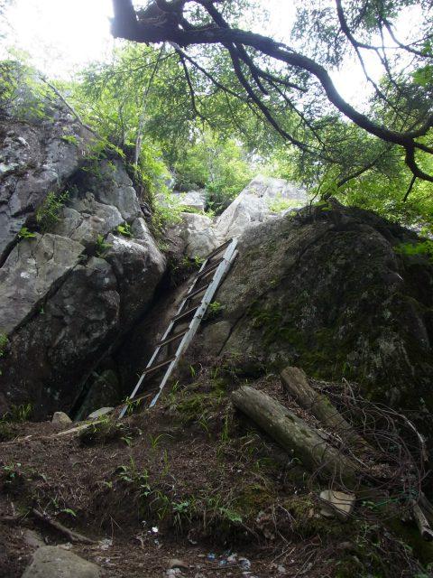 乾徳山(大平高原~道満尾根)登山口コースガイド 鳳岩の迂回路の鎖場【登山口ナビ】