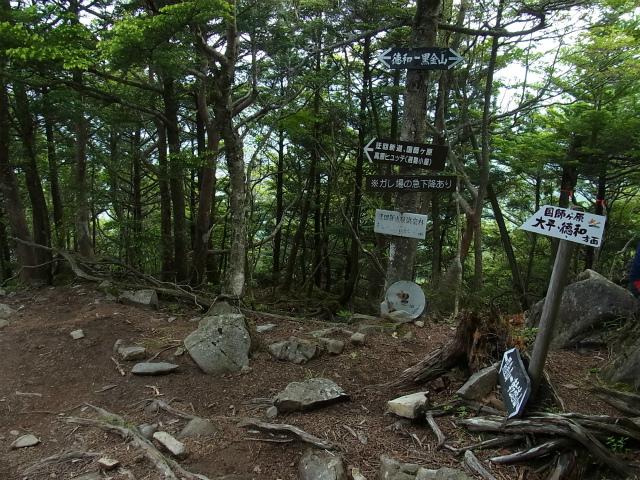 乾徳山(大平高原~道満尾根)登山口コースガイド 下山道分岐【登山口ナビ】