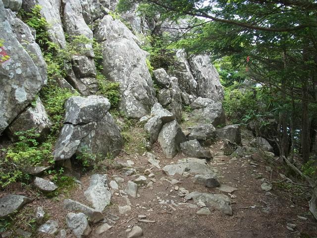 乾徳山(大平高原~道満尾根)登山口コースガイド 迂回下山道【登山口ナビ】