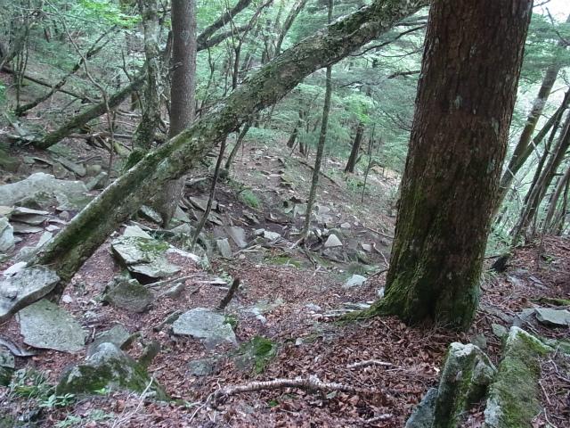 乾徳山(徳和峠~道満尾根コース)迂回下山道【登山口ナビ】