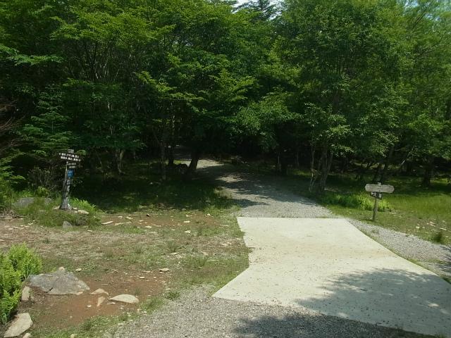 乾徳山(徳和峠~道満尾根コース)国師ヶ原十字路【登山口ナビ】