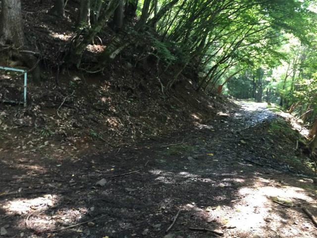 乾徳山(銀晶水・徳和コース)登山口コースガイド 林道横断【登山口ナビ】